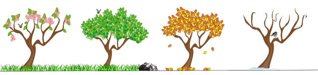 Illustration of the four seasons as shown with four trees. Image from Pixabay