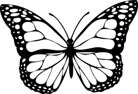 Vector graphic of a butterfly. Image from Pixabay