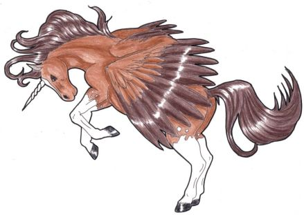 coloured drawing of a rearing unicorn pegasus by ari meghlen