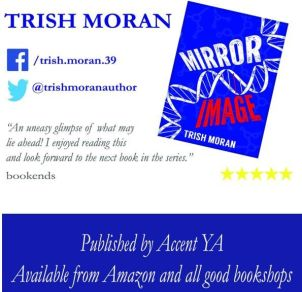 Image Book cover for Mirror Image by Trish Moran