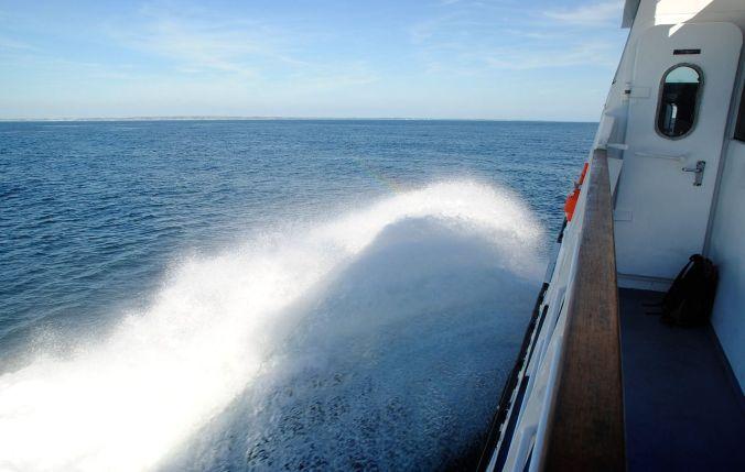 Image: Ferry