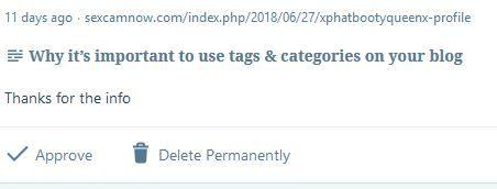 Image a subtle spam comment