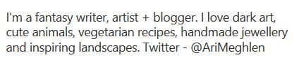 Screenshot of Ari Meghlen's Pinterest Profile Description