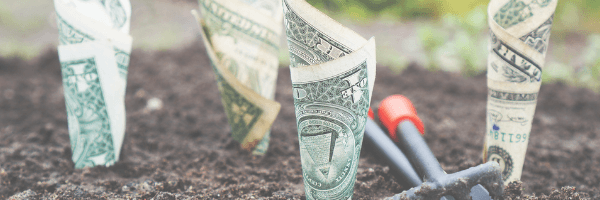 Money in the ground, growing investment