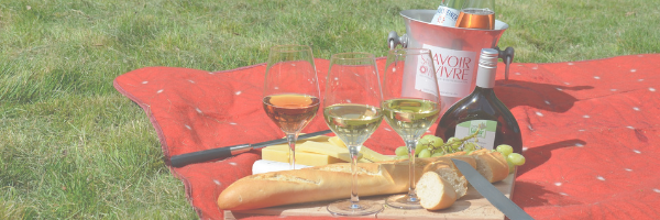 Picnic blanket with wine, bread and cheese. Pixabay image