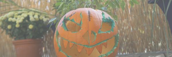 Pumpkin carving. Pixabay image.