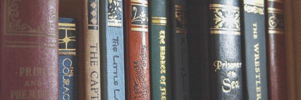 Shelf full of books. Image from Pixabay