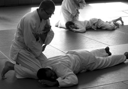 martial arts, grapping, opponent pinned. Image from Pixabay
