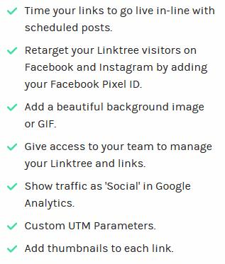 Linktree pricing - Pro option