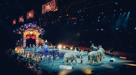 Circus tent, circus animals, performers