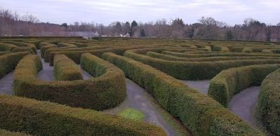 Large Hedge maze, labrinyth