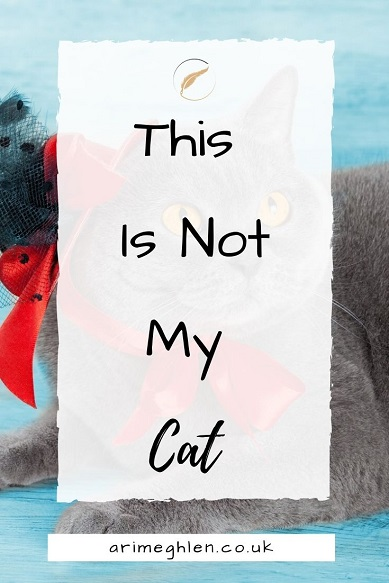 BAnner This Is Not My Cat.  Arimeghlen.co.uk.  Image of Cat in a cat from StoryBlocks