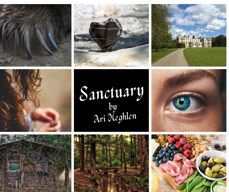 Book Aesthetic for Short Story Sanctuary by Ari Meghlen